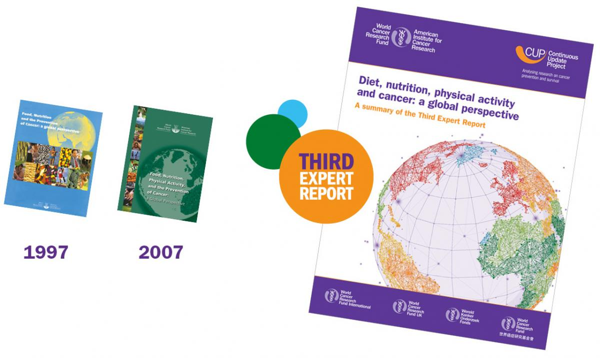 Covers of the Third Expert Report as well as the reports from 2007 and 1997