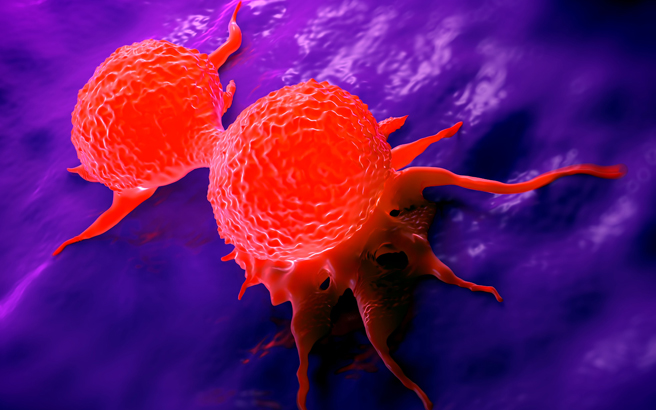 Microscope imagery of dividing breast cancer cells