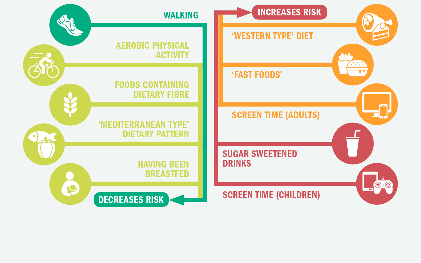 Infographic decribing factors that will increase and decrease your risk of weight gain, overweight and obesity