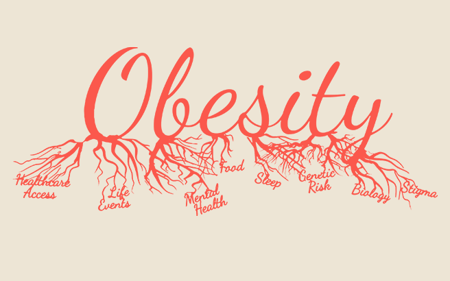 Obesity graphic depicting various root causes of the problem